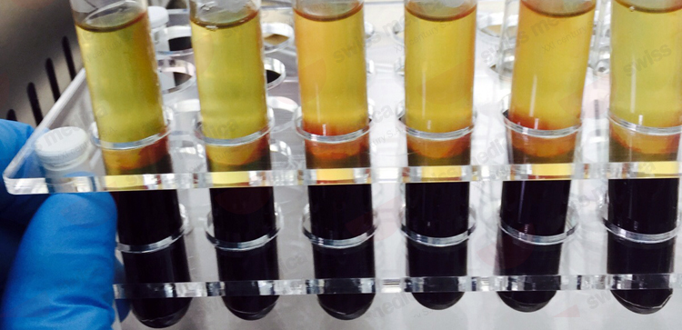 cellule staminali per iniezioni per perdere peso